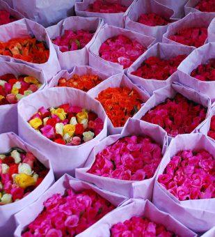 flowers-market